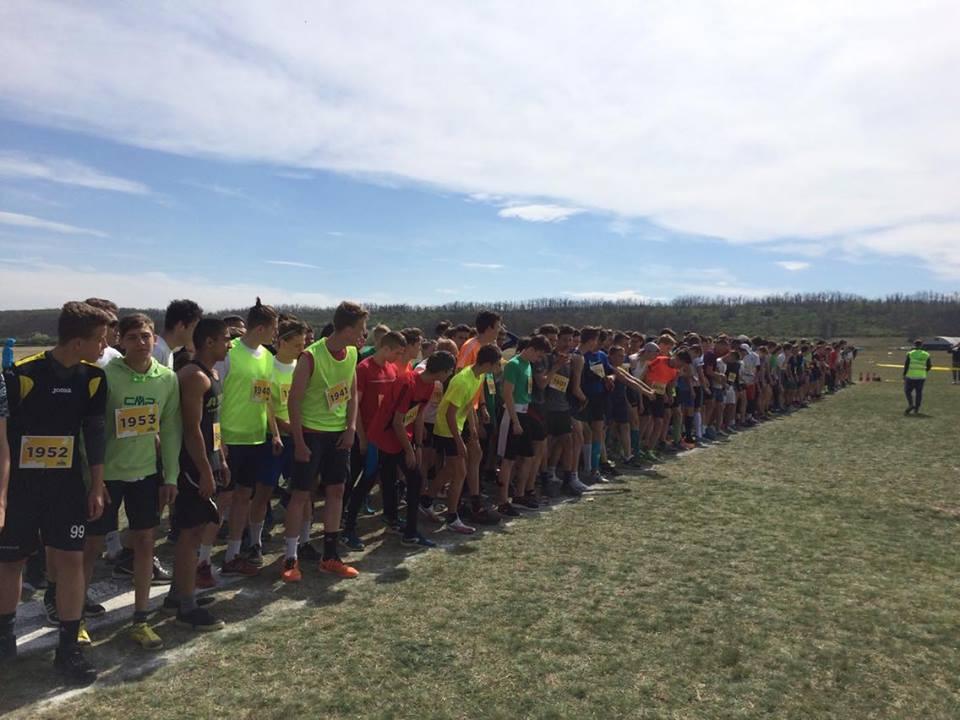 Pest Megyei Diákolimpia 2017